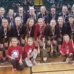 Volleyball finishes as State Runner Up