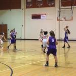 Valhalla High School Girls Varsity Basketball falls to Santana High School 33-41