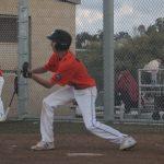Norsemen Varsity Baseball beats University City