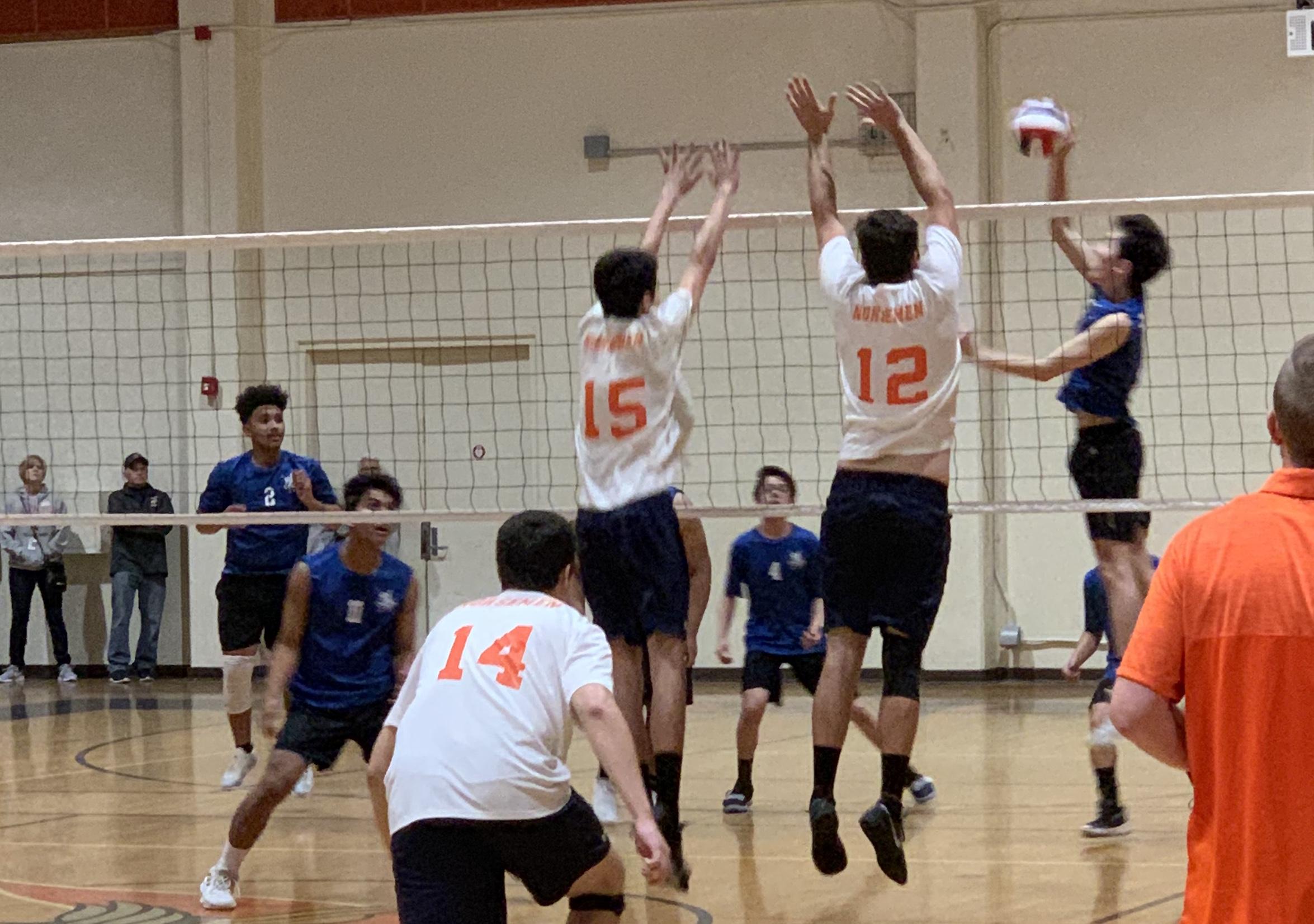 New Men's Volleyball Head Coach – Shayne Hollander