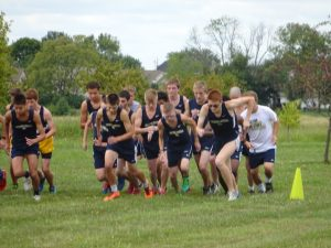 Greenwood Quad Meet