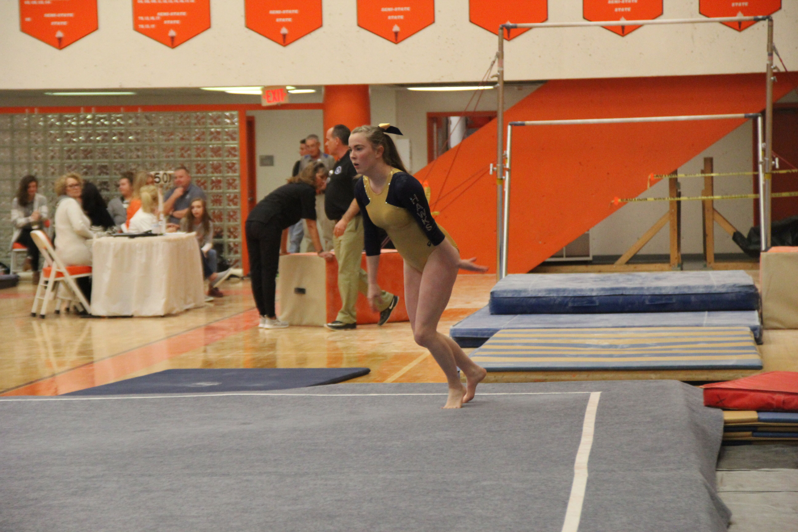 February 22, 2019 – Varsity Gymnastics Sectionals
