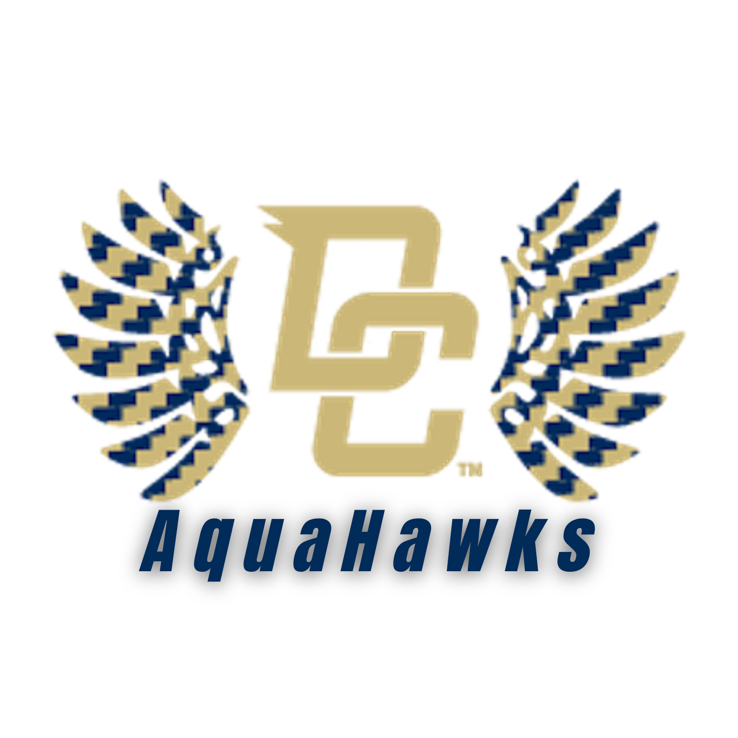 2020-21 DCHS Swimming/Diving Team Information