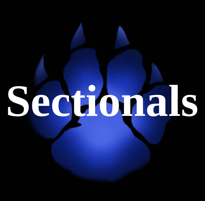Sectional Football Game at Home Tonight
