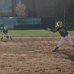 Saint Francis High School Varsity Softball falls to Buffalo High School 9-6