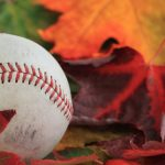 Baseball Program Fall Update