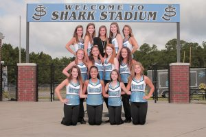 Sharkies Dance 2017-2018