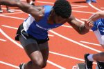 Sharks have good showing at County Meet