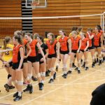 Volleyball Sectional vs. Clay