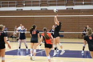 Volleyball vs. Michigan City