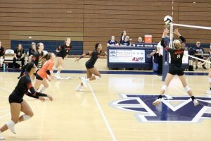 Volleyball vs. Michigan City
