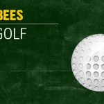 Medina Bees Girls Golf Info
