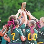 Softball: Bees win district crown