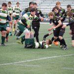 Medina High School Boys Varsity Rugby falls to St Edward High School 33-5