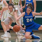 Girls Varsity Basketball beats Blue Devils, 48 – 25