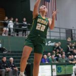 Bees beat Strongsville in 56-43 road victory
