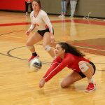 Tiger volleyball sweeps Temple