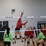 JV falls in two tight games to Ellison, Freshmen Red outlast Lady Eagles