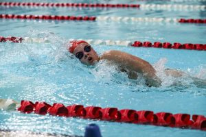 Belton Tiger Swim vs Austin High Photos