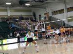 GlenOak Volleyball -vs- Jackson pictures 2020