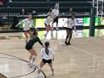 GlenOak Volleyball -vs- Hoover Vikings 2020