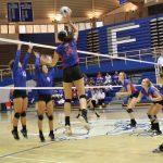 Volleyball Defeats Frankfort