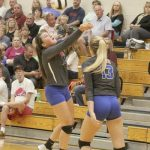 Volleyball downs Hot Dogs
