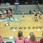 Volleyball Splits With LCC