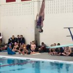 Fettig breaks diving record as Stars split with Danville