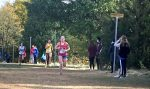 Girls Cross Country competes in Regionals; Knoper advances to semi-state