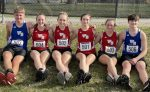 WeBo distance runners compete at the Hoosier Southern Relays