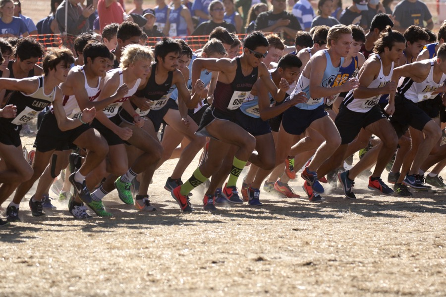 CIF Champs!!!! CHS Boys Cross Country finishes 1st place at CIF Finals