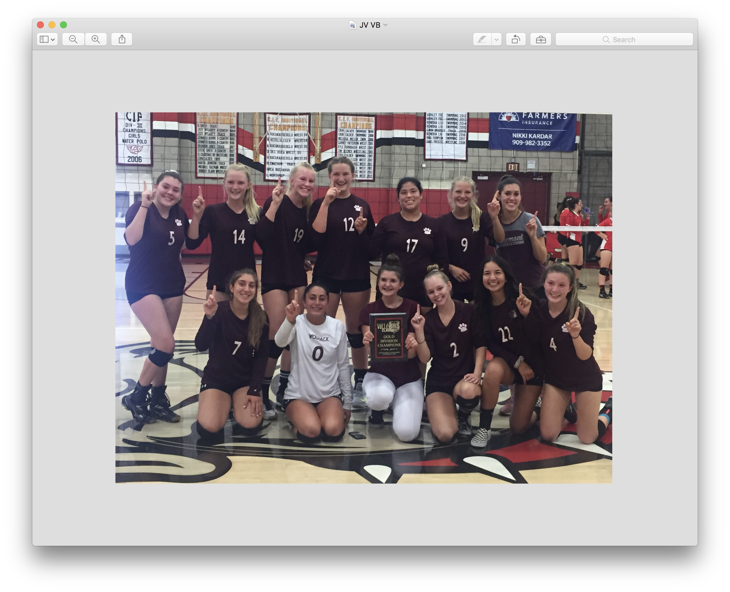 Girls JV Volleyball Wins Ayala Tournament!!