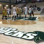 Westfield High School Girls Varsity Basketball beat Mt. Vernon 34-29