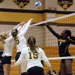 Volleyball Wins Two of Three Matches