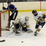 Skaters Fall in Regional Play