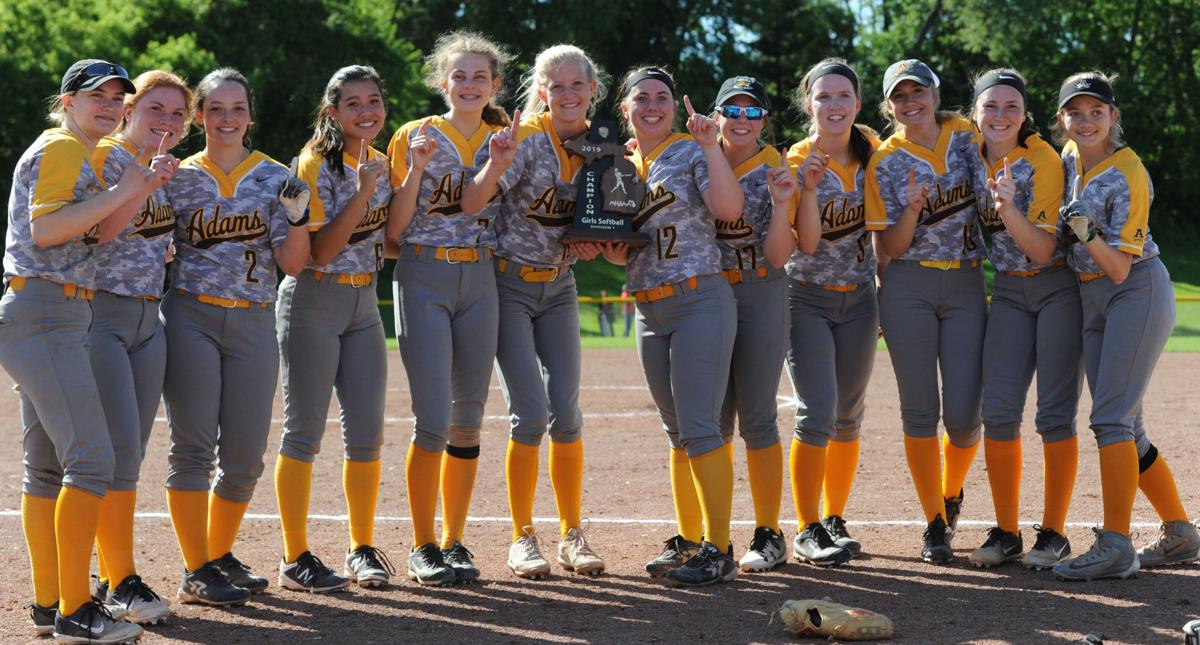 Softball Wins District Championship