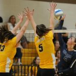 Volleyball Falls to Stoney Creek