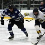Hockey Advances to Regional Final