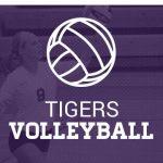 Girls' Volleyball Summer Clinic