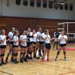 Volleyball Stings Hornets