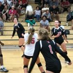 Volleyball Team Tames The Bulldogs