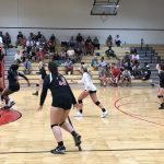 Volleyball Teams Cut Down Giants