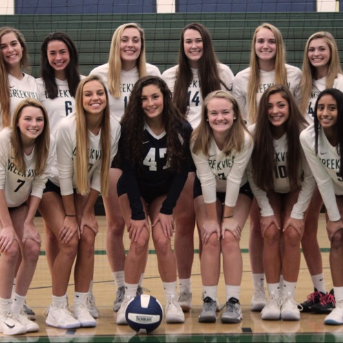 Lady Grizzlies Volleyball Keep advancing in Region Tournament!