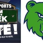 Time to Vote Grizzlies!