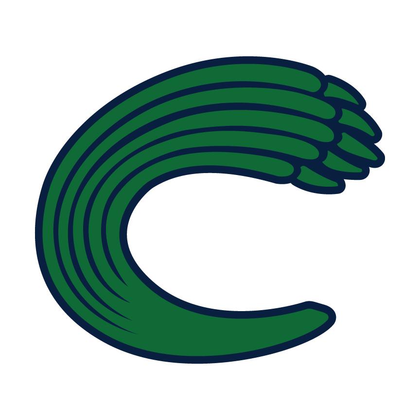 Creekview Baseball  Region 7AAAAAA Award Winners