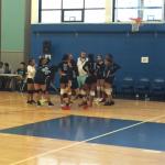 Girls Volleyball 2017