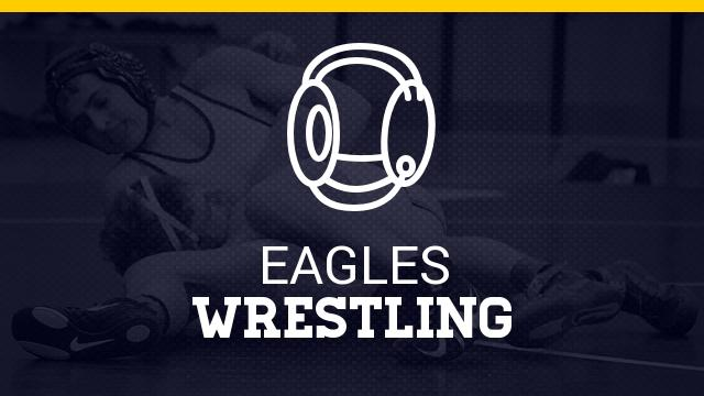 Top 5 wrestlers in talent-rich Livingston County