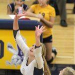 Volleyball gets a sweep over Brighton