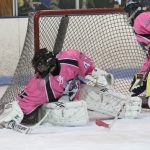 Hockey Battles Howell and Cancer